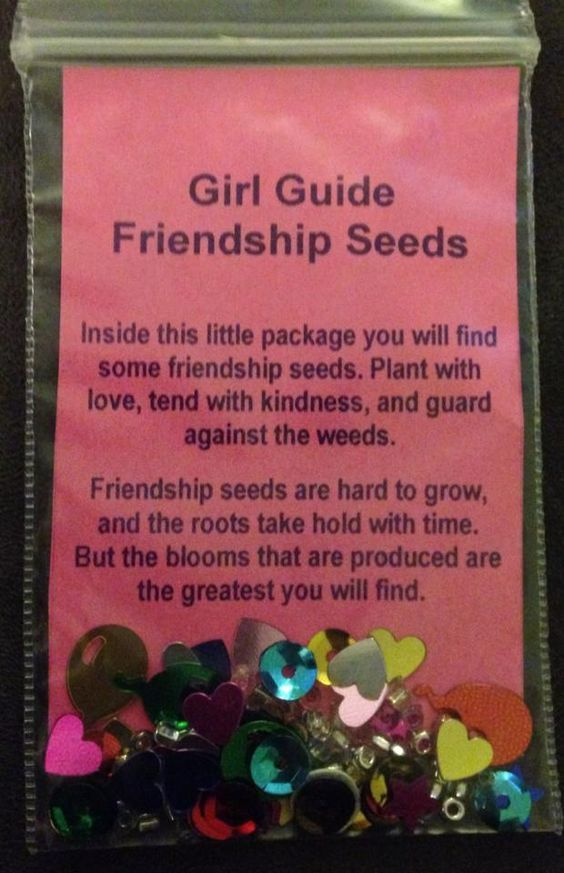 Activity ideas for girl guides