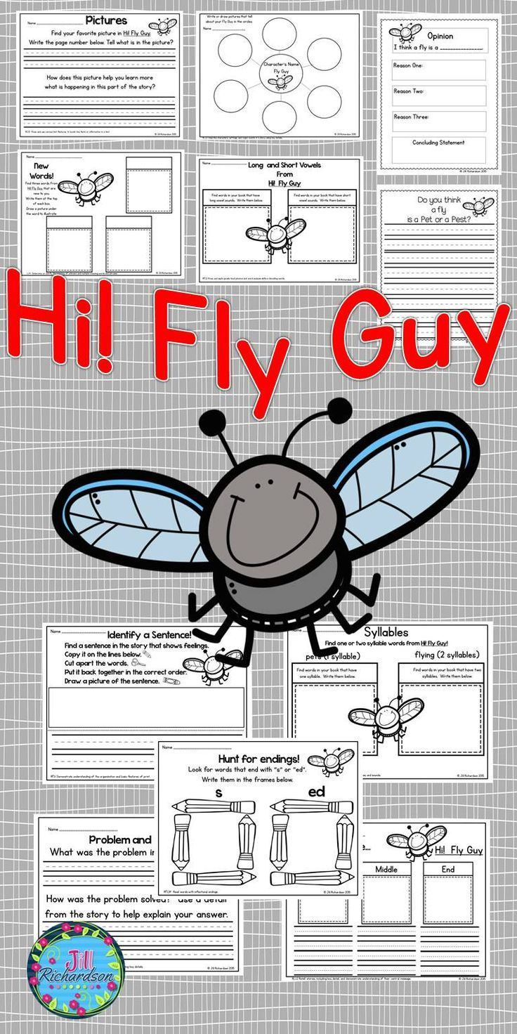 Fly guy guided reading level