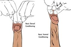 pdi manual penis stretching method